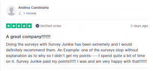 Is Survey Junkie legit? [unbiased review 2019] - Money Fect